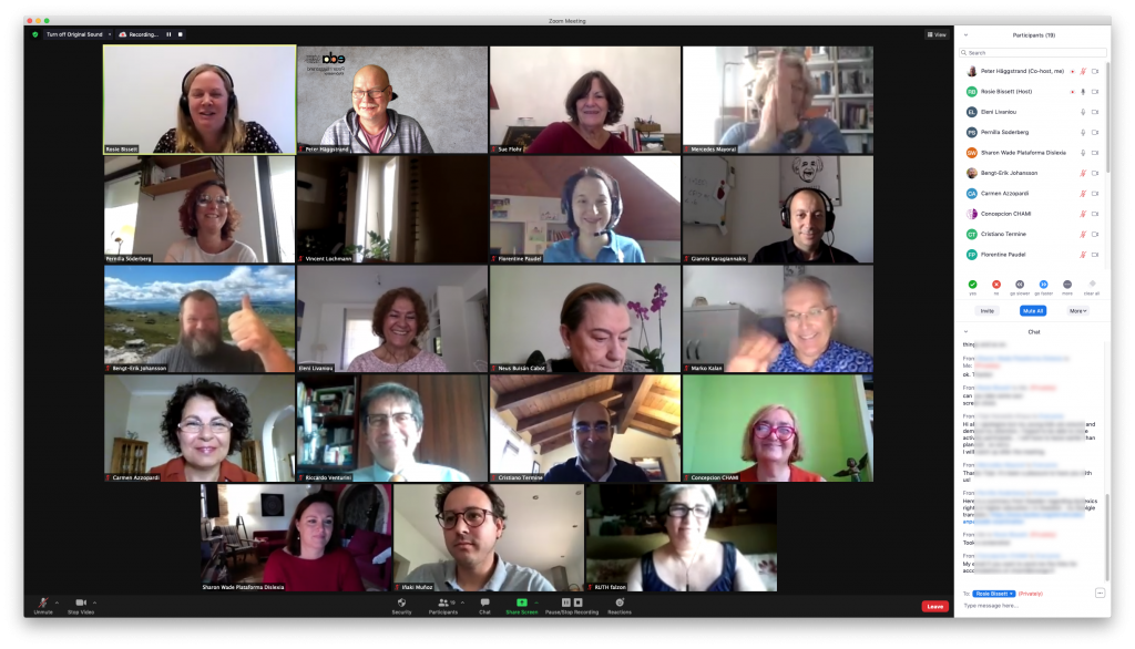 Screenshot of online meeting
