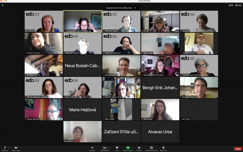 Picture from the online meeting