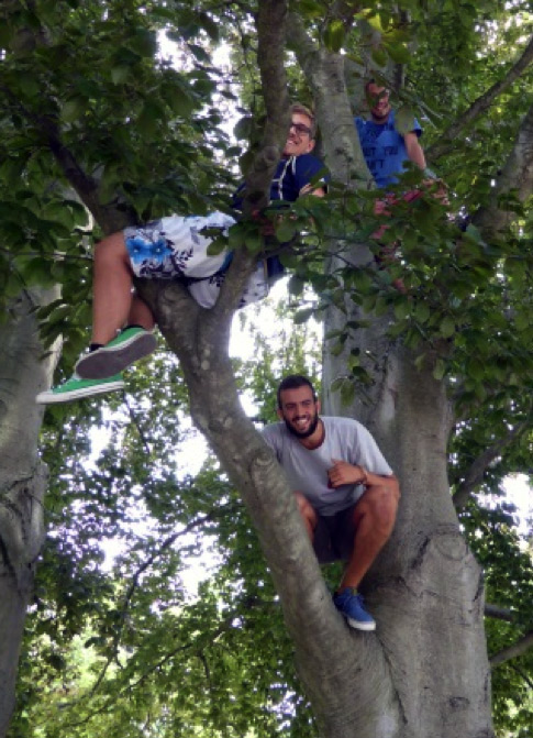 The guys climbing in the trees